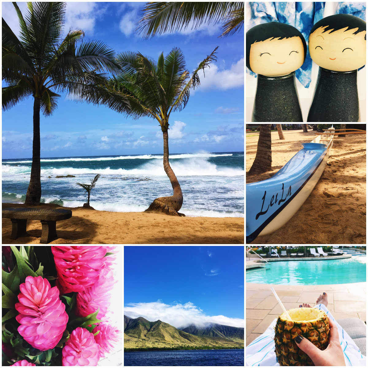 Photos from Maui, Hawaii including the ocean, flowers, and pools